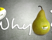 """About the Name """"Fancy Pear Design"""""""